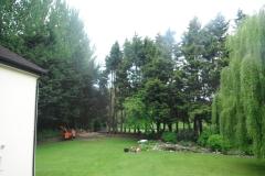 Advanced tree care 061
