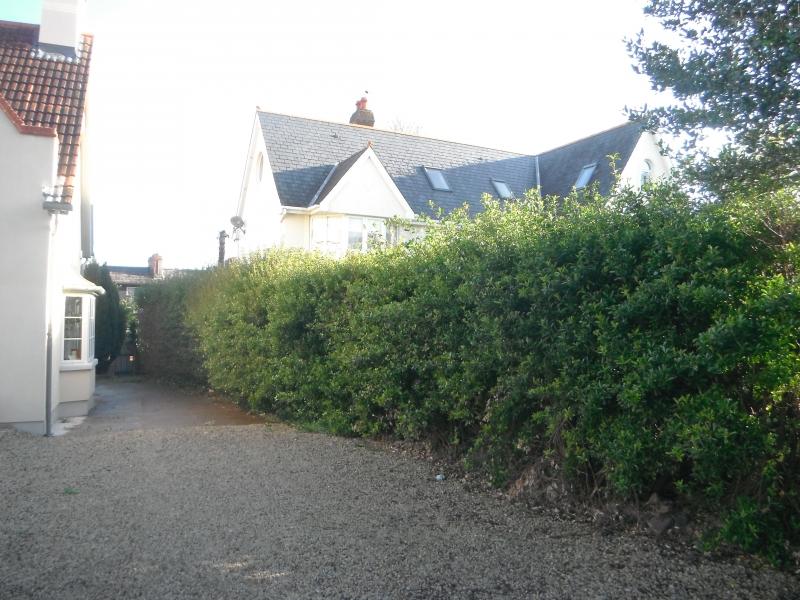 hedge cutting cork