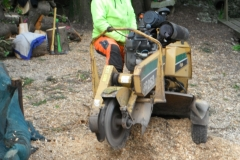 Stump Grinding Glanmire